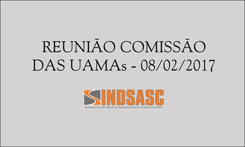 REUNIÃO COMISSÃO DAS UAMAs - 08/02/2017